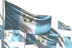 Bonito muitas bandeiras da Guatemala são onda isolada em branco - imagem com foco macio - toda a ilustração da bandeira 3d do fer ilustração royalty free