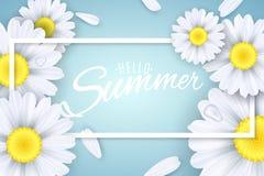 Bonjour été Bannière saisonnière Fleurs de Camomiles sur un fond bleu-clair Texte dans un cadre Pétales en baisse Illustration de Photographie stock