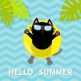 Bonjour été Chat noir flottant sur le cercle jaune de l'eau de piscine d'air lifebuoy Lame de palmier Caractère de détente de ban Image libre de droits