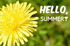Bonjour affiche de motivation de citation d'été Photos stock