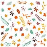 Bonjour automne Autumn Leaves Background Photographie stock