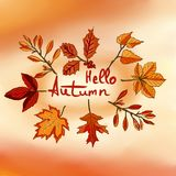 Bonjour automne, bannière d'aquarelle des feuilles sur le backgr coloré illustration libre de droits