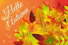 Bonjour automne Différentes feuilles d'automne colorées de feuillage tiré par la main de nature Photo libre de droits