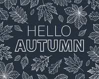 Bonjour Autumn Background Image stock