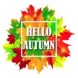 Bonjour Autumn Background Lames d'automne lumineuses Vous pouvez placer votre texte au centre Photographie stock
