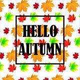 Bonjour Autumn Background Lames d'automne lumineuses Vous pouvez placer votre texte au centre Images stock