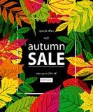 Bonjour Autumn Sale Photographie stock