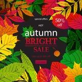 Bonjour Autumn Sale Image stock