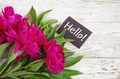 Bonjour ! Bouquet des pivoines roses et la carte avec l'inscription bonjour ! Image libre de droits