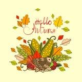 Bonjour carte de voeux d'automne de lettrage d'aspiration d'Autumn Season Banner With Hand Image stock
