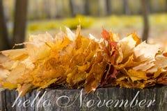 Bonjour carte de voeux de novembre Feuilles d'érable d'automne image stock