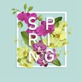 Bonjour conception tropicale de ressort L'orchidée tropicale fleurit le fond pour l'affiche, bannière de vente, plaquette, insect illustration de vecteur