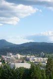 Bonjour Eugene Photos libres de droits