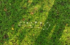 Bonjour fond d'herbe Image libre de droits