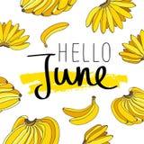 Bonjour juin Calligraphie à la mode Photographie stock
