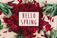 Bonjour le texte de ressort se connectent de belles pivoines rouges fleurissant sur le petit morceau Photo stock