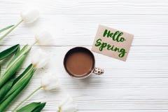 Bonjour le texte de ressort se connectent des tulipes avec la carte de voeux de métier et la Co Photo libre de droits
