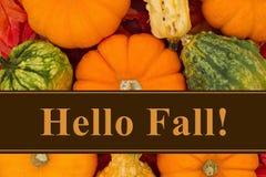 Bonjour message d'automne photographie stock libre de droits
