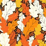 Bonjour modèle d'automne Image stock