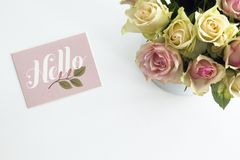 Bonjour roses ! images stock