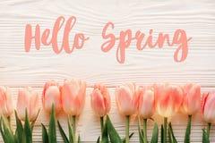 Bonjour signe des textes de ressort, belles tulipes roses sur l'OE rustique blanc Photo libre de droits
