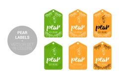 Bonkreta sklepu owocowe Naturalne etykietki ustawiają w zieleni, pomarańcze kolory ilustracji