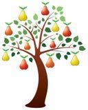 bonkrety drzewo royalty ilustracja