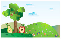 Bonkrety drzewo Zdjęcia Royalty Free