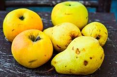Bonkrety i jabłka obrazy royalty free