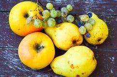 Bonkrety, jabłka i winogrona, fotografia stock