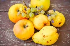 Bonkrety, jabłka i winogrona, zdjęcie royalty free