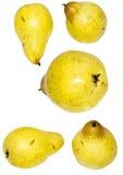 bonkrety kolor żółty Fotografia Royalty Free