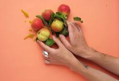 Bonkrety z ręką na brzoskwiniowym mieszkaniu Obraz Royalty Free