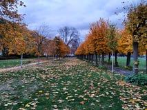 Bonn, Duitsland stock foto's