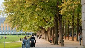 Bonn, Germany, 02 of November 2017: Resting Students In Park In Front Of Bonn University In Good Autumnal Weather. Pedestrians Slow Walking Along Alley stock footage