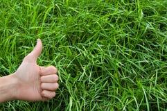 Bonne écologie ! Image libre de droits