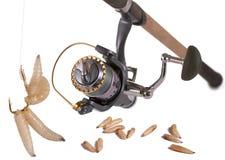 Bonne amorce pour la pêche. Photos libres de droits