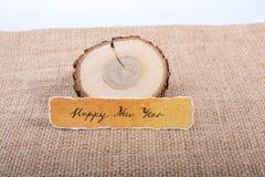 Bonne année écrite sur un papier déchiré Photographie stock libre de droits