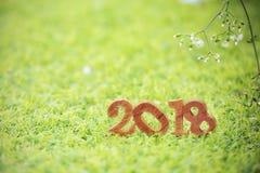 Bonne année 2018, concept de nature Photographie stock libre de droits