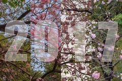 Bonne année 2017 dans le thème de fleur Image libre de droits