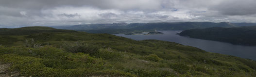 Bonne Bay Lookout Royalty Free Stock Photography