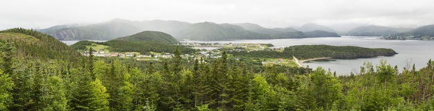 Bonne Bucht und Norris Point Panorama Stockbilder