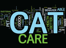 Bonne Cat Care Means un concept heureux de Cat Text Background Word Cloud Photographie stock libre de droits