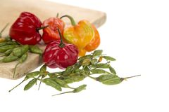 Bonnet en groene Spaanse peperpeper stock foto's