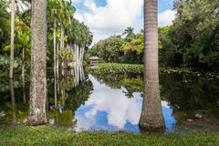 Bonnet House gardens, Ft Lauderdale, Florida. Bonnet House slough in gardens of museum estate in Fort Lauderdale, Florida, USA Royalty Free Stock Image