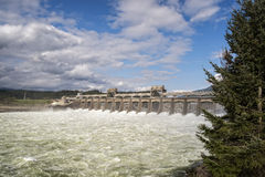 Bonneville Dam Royalty Free Stock Images