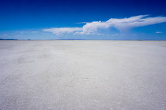 Bonneville salt flats. The salt flats with a blue sky and a passing cloud Stock Images