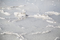 Bonneville Salt Flats in Utah close-up after a rainstorm Royalty Free Stock Photo
