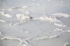 Bonneville-Salz-Ebenen in Utah-Nahaufnahme nach einem Regensturm Lizenzfreies Stockfoto