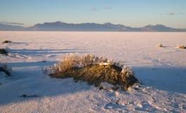 Bonneville soli mieszkań Graham szczytu zmierzchu pasmo górskie Fotografia Stock